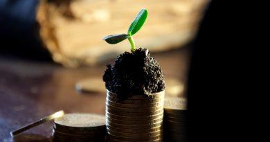 DuoLife e le possibilità di guadagno